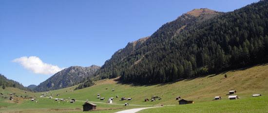 Ausfluege-Landeck-Tirol-Berge-Wiese