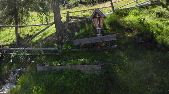 Ausfluege-Landeck-Tirol-Bergwiese